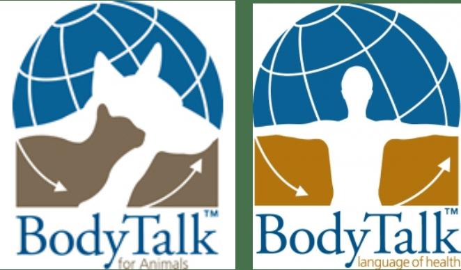 bt 2 logos